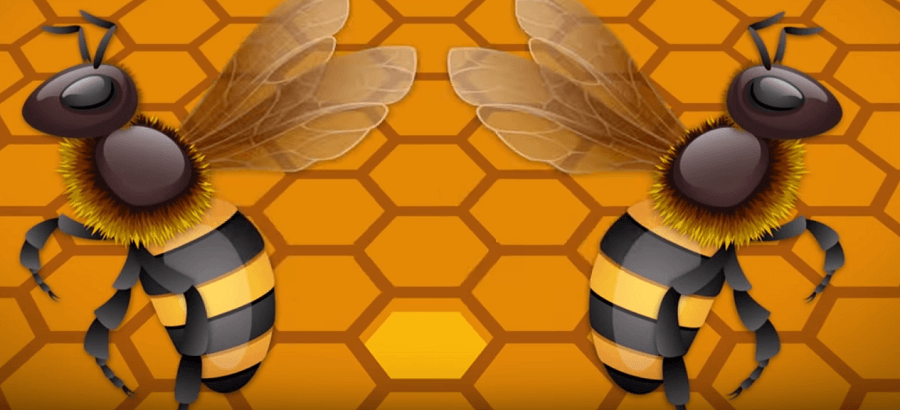 Bees beat their wings to dry out the nectar into honey