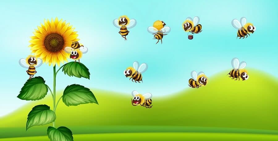 How bees make honey infographic for kids
