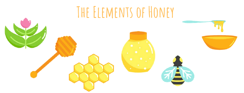 What bees need to make honey infographics for kids