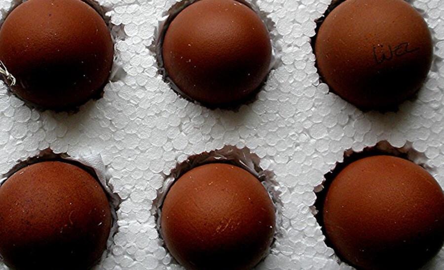 Chicken Breeds that lay dark brown eggs
