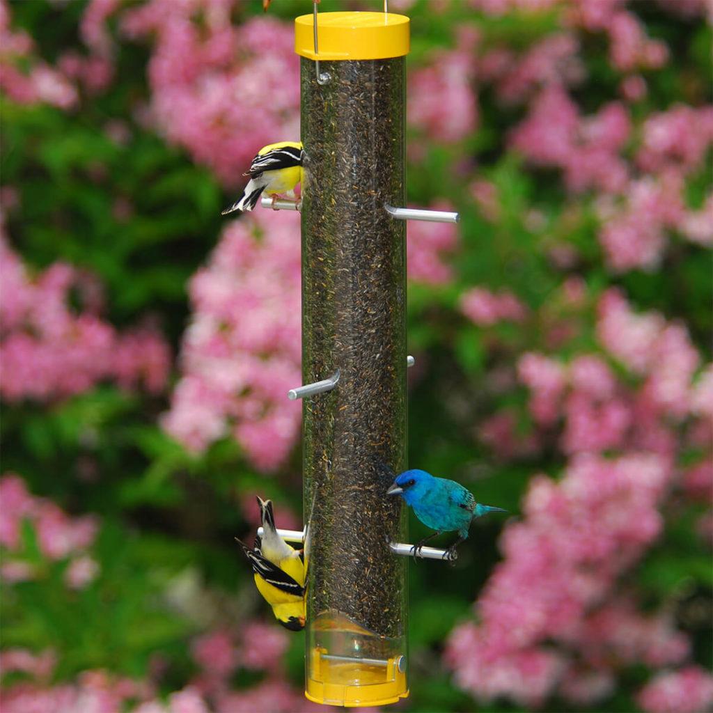 Droll Nyjer Bird Feeder (1)