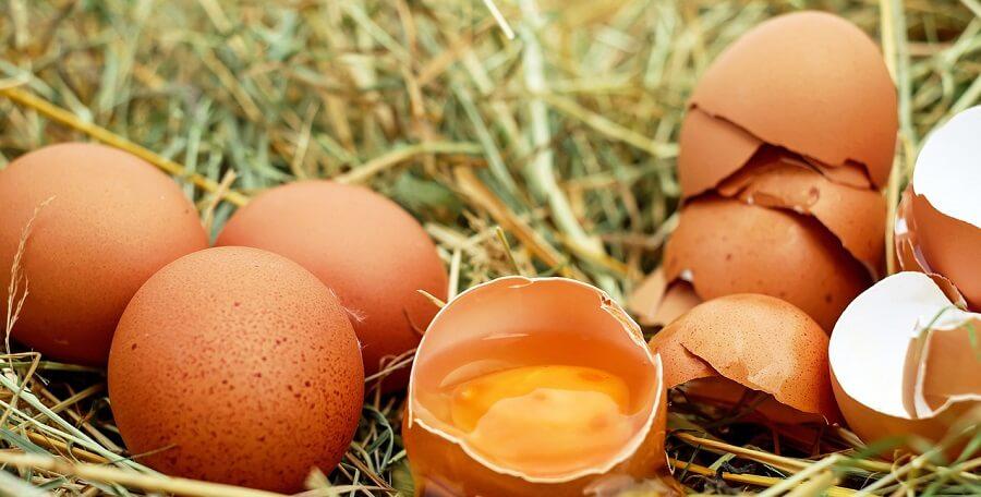 How to keep eggs fresh