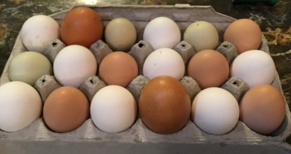 Store eggs from oldest to youngest