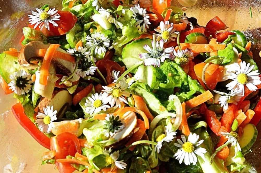 Edible flowers in salads and main dishes (1)