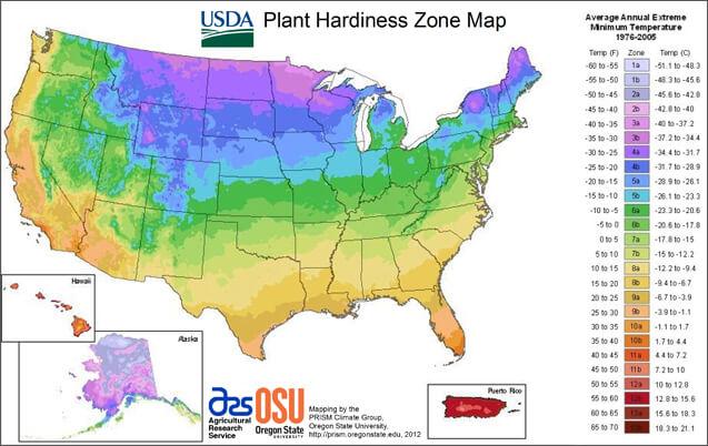 USDA plant hardiness zone (1)