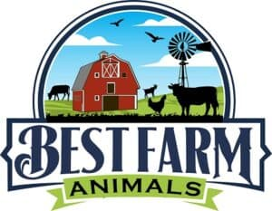 Best Farm Animals Logo 450