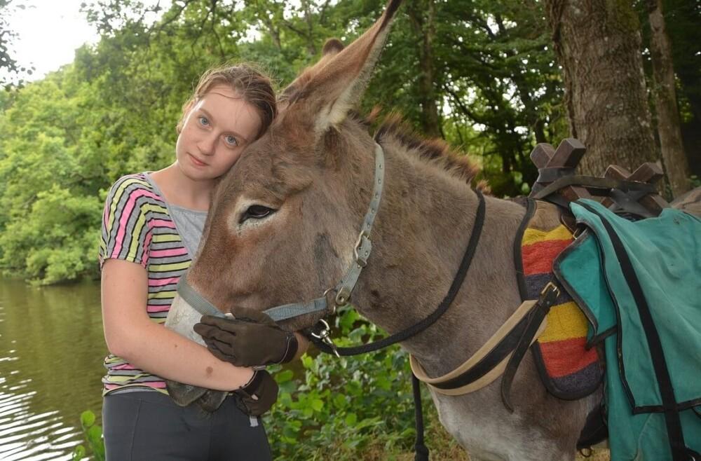 Donkeys are extremely loyal (1) (1)