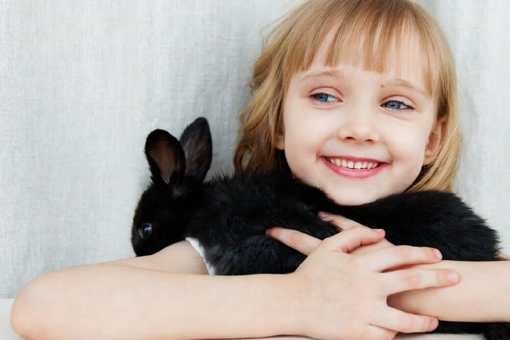 100 foods your rabbit can eat (1)