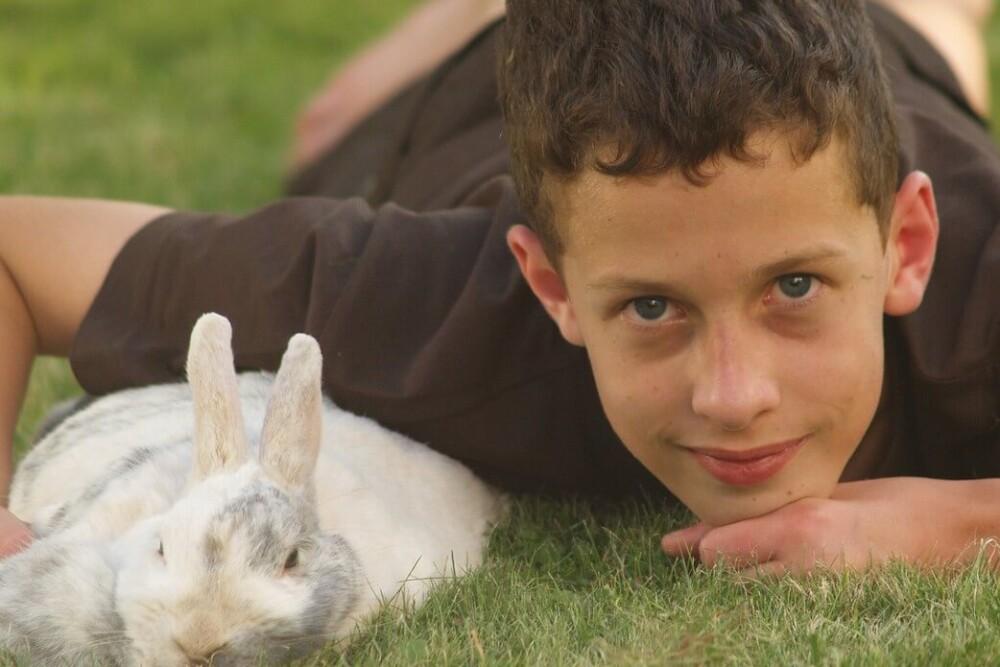 50 common dangerous foods for rabbits (1)