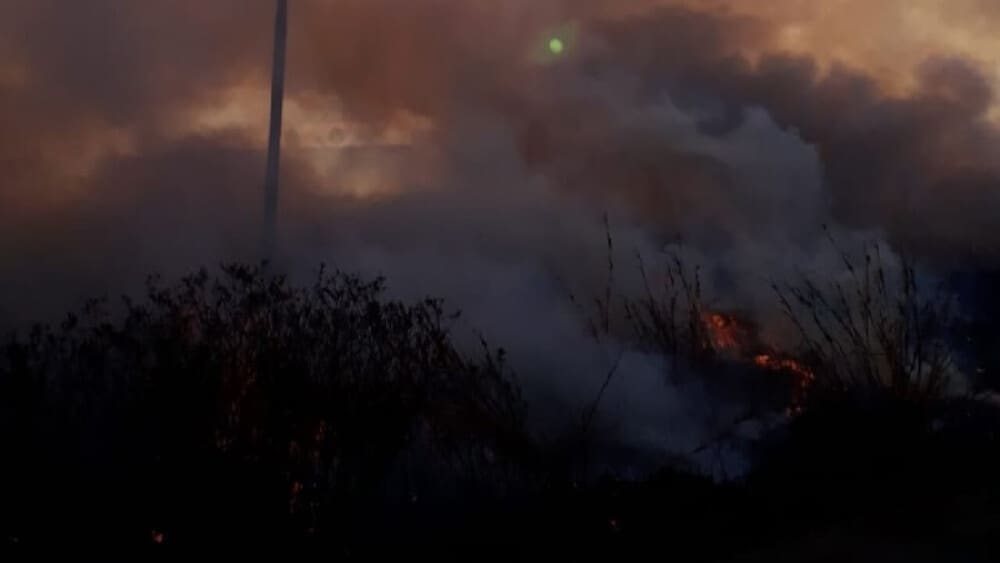 Wildfires quickly endanger livestock and farm livelihood (1)