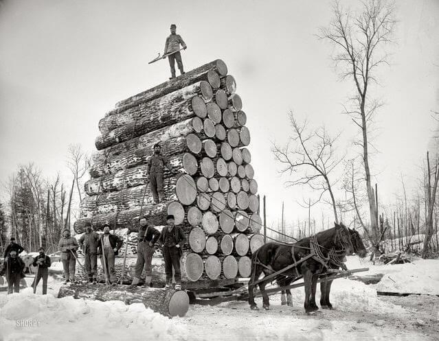 Workhorse pulls heavy load (1)Workhorse pulls heavy load (1)
