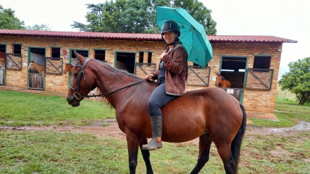 aids for calming a skittish horse (1)