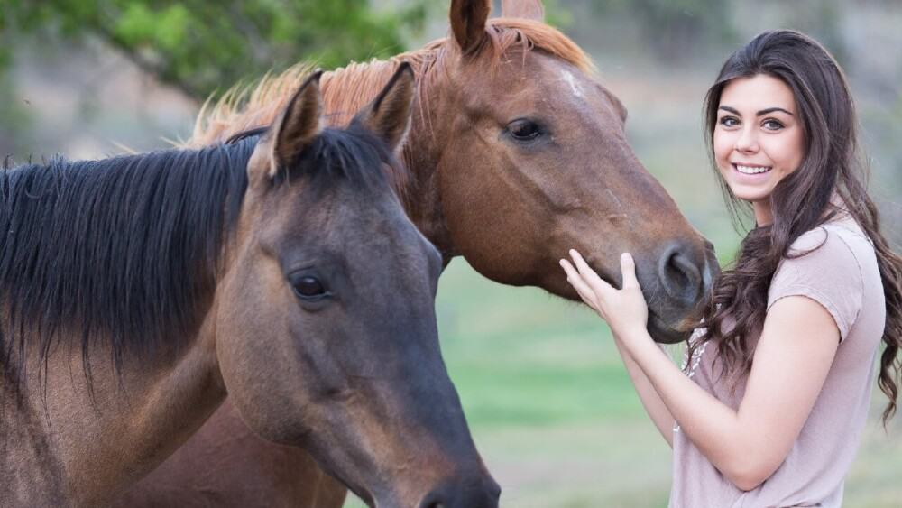 Horses exhibit separation anxiety when owners are gone (1)