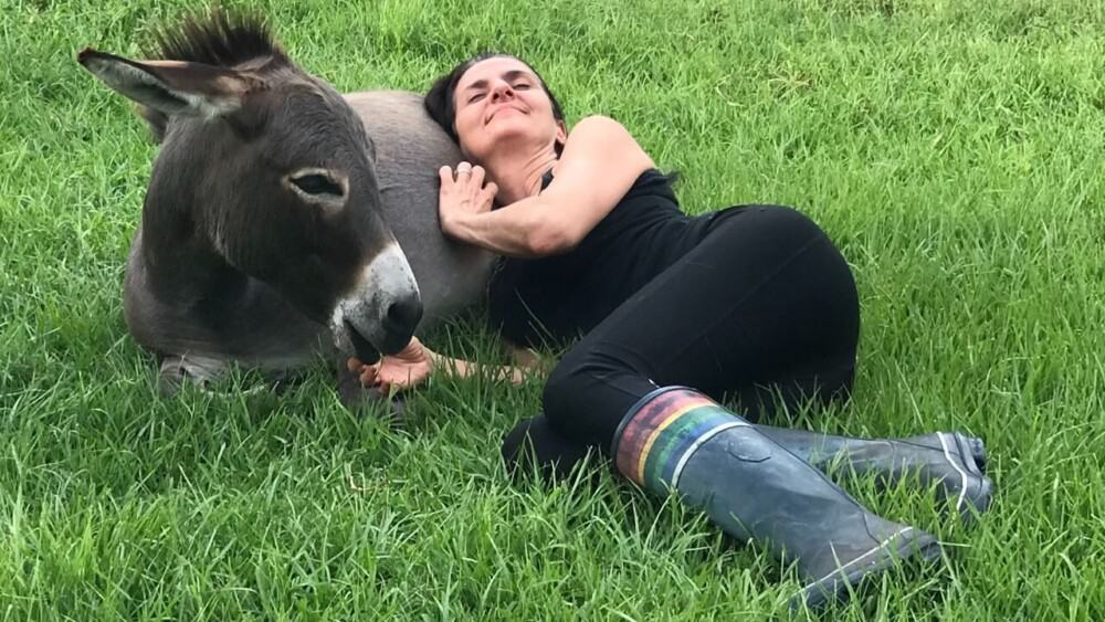 show your donkey love by spending time with it
